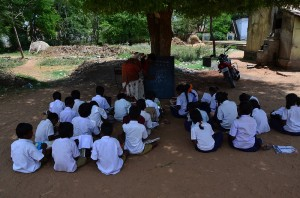a class under a tree
